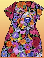 Flower Black Lab Fine-Art Print