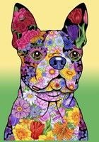 Flowers Boston Terrier Fine-Art Print