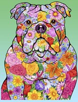 Flowers Bulldog Fine-Art Print