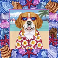 Seashells Beagle Fine-Art Print