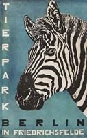 Berlin Zebra Fine-Art Print