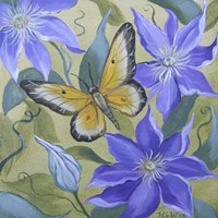 Large Butterfly and Clematis Fine-Art Print