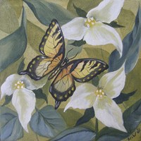 Large Butterfly and Trillium Fine-Art Print