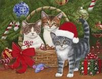 Christmas Kittens in a Basket Fine-Art Print