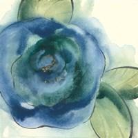 Wannabe Poppies VI Fine-Art Print