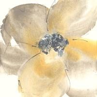 Flower Tones II Fine-Art Print