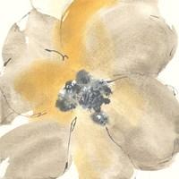 Flower Tones I Fine-Art Print