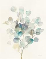 Eucalyptus III Fine-Art Print