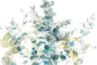 Eucalyptus I White Crop Fine-Art Print