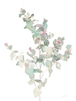 Eucalyptus II White Fine-Art Print