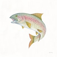 Gone Fishin Rainbow Framed Print