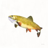 Gone Fishin Brookie Framed Print