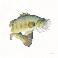 Gone Fishin Large Mouth Framed Print