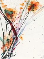 Floral Explosion II Fine-Art Print