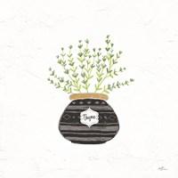 Fine Herbs VI Fine-Art Print