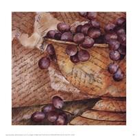 Script and Fruit I Fine-Art Print