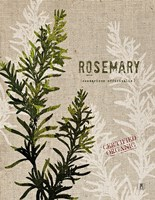 Organic Rosemary No Butterfly Fine-Art Print