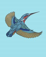 Kingfisher Fine-Art Print