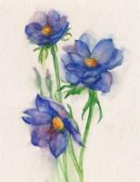 Blue Flowers Fine-Art Print