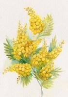 Yellow Blooms Fine-Art Print