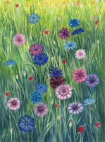 Wild Flowers Fine-Art Print