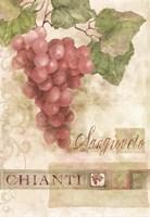 Chianti Sangioveto 2 Fine-Art Print