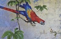 Parrot Fine-Art Print