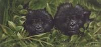 Buddies Fine-Art Print