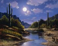 Desert Splendor Fine-Art Print
