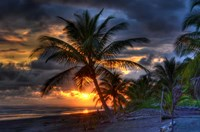 Tropical Sunset Fine-Art Print