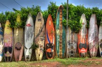 Surf Boards Fine-Art Print