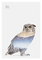 Snow Owl I Fine-Art Print