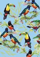 Jungle Birds Fine-Art Print