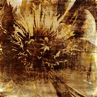 Poppy Gold IV Fine-Art Print