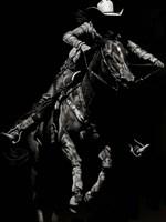 Scratchboard Rodeo IV Fine-Art Print