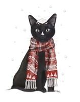 Black Cat, Red Scarf Fine-Art Print