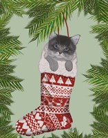 Grey Kitten in Christmas Stocking Fine-Art Print