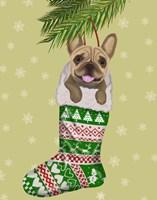 French Bulldog in Christmas Stocking Fine-Art Print