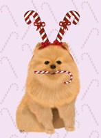Pomeranian and Candy Canes Fine-Art Print