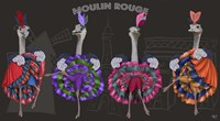 Ostrich, Can Can Troupe Fine-Art Print