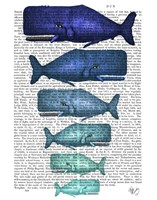Blue Whale Family Fine-Art Print