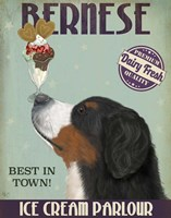 Bernese Ice Cream Fine-Art Print