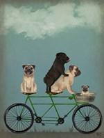Pug Tandem Fine-Art Print