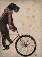 Schnauzer on Bicycle, Black Fine-Art Print