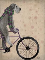 Schnauzer on Bicycle, Grey Fine-Art Print