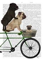 Pugs on Bicycle Fine-Art Print