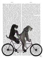 Schnauzer Tandem Fine-Art Print