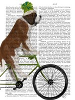 St Bernard on Bicycle Fine-Art Print
