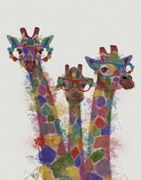 Rainbow Splash Giraffe Trio Fine-Art Print