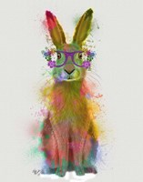 Rainbow Splash Rabbit 1 Fine-Art Print